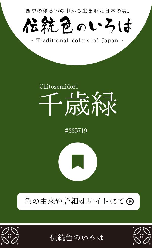 千歳緑(Chitosemidori)