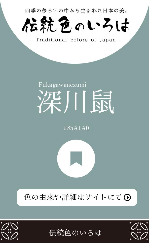 深川鼠(Fukagawanezumi)