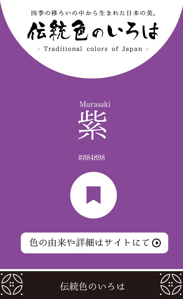 紫(Murasaki)