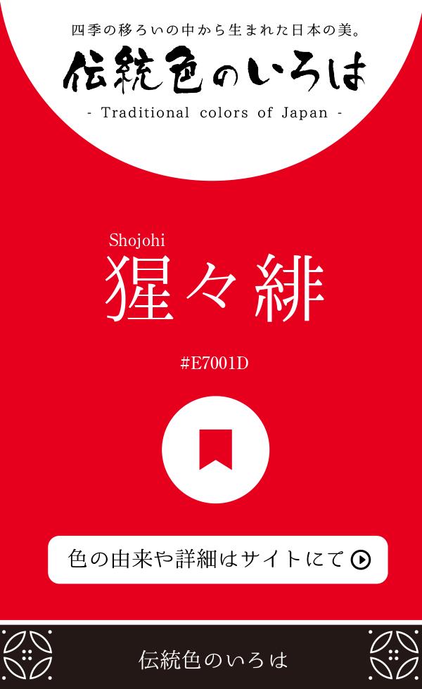 猩々緋(Shojohi)