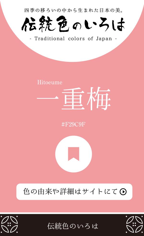 一重梅(Hitoeume)