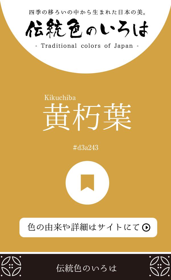 黄朽葉(Kikuchiba)